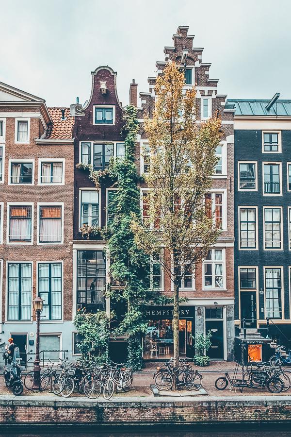 TripLife migliori-coffe-shop-di-Amsterdam_2